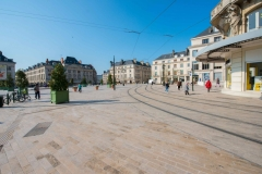Pierre Naturelle Conseil réalisation à Orléans (1)